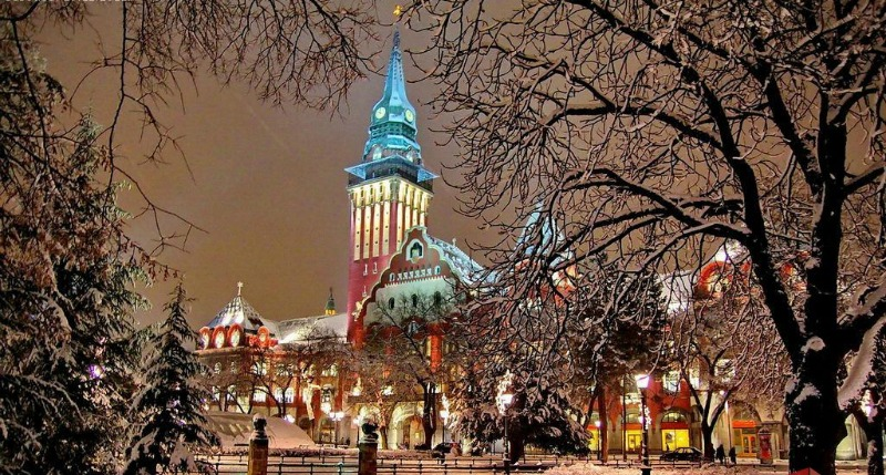 Top 5 things to do in december for Best trips to take in december