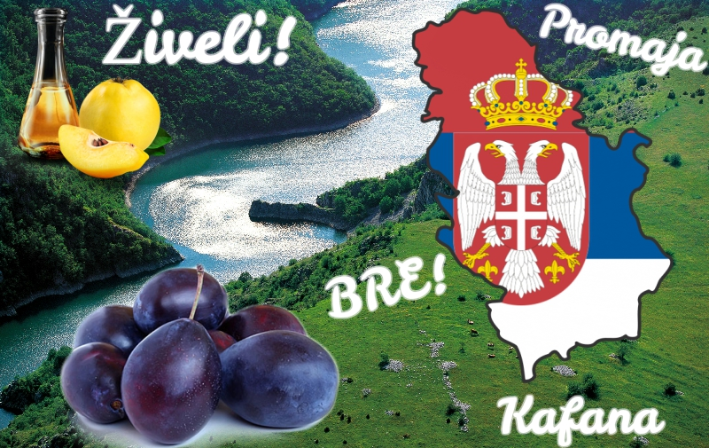 10 Serbian Words You Have to Learn - Serbia com