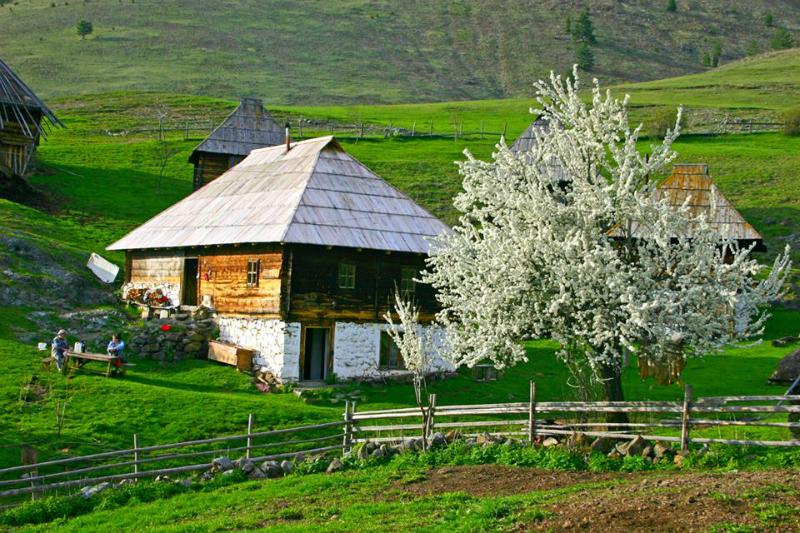 Lepa Srbija Ticje polje